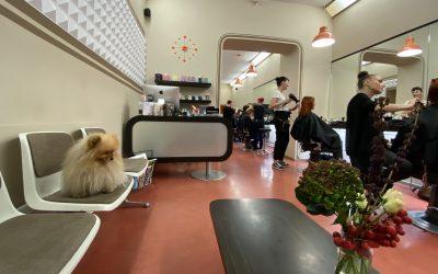 Friseur Haareszeiten Oderberger Straße